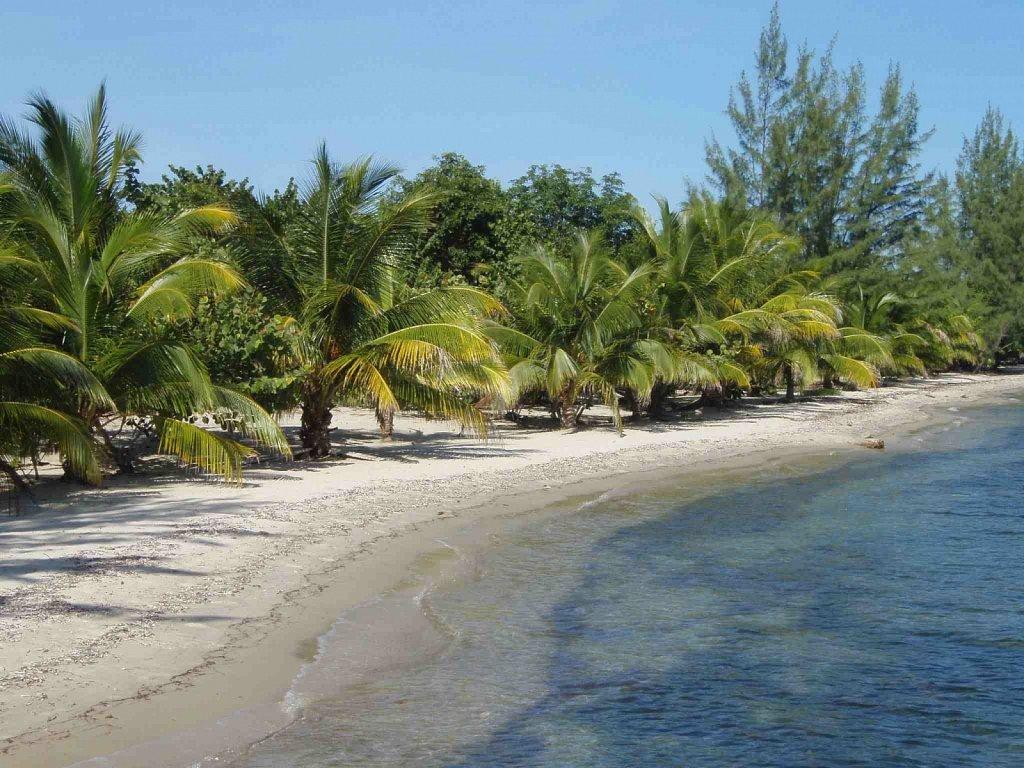 VAC-Our-Beach.jpg