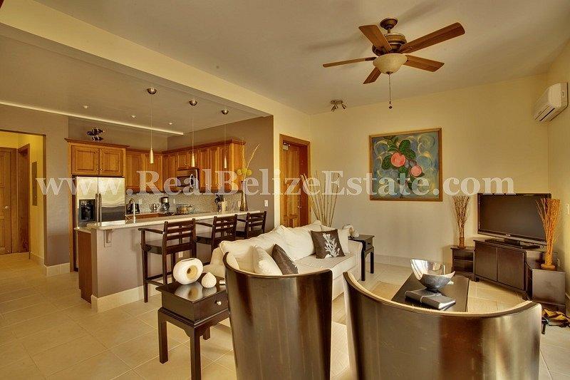 VAC-model-unit-living-rm-kitchen-wide-angle-copy-2.jpg